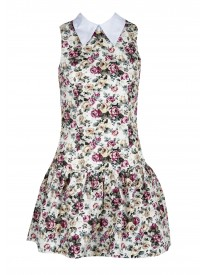 Collared Floral Mini Dress